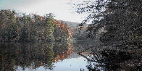 Dockery Lake Hike